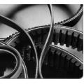 Cinghia per variatore motore Heidelberg GTO 46/52
